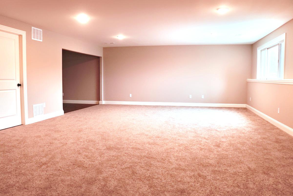 Carlee basement